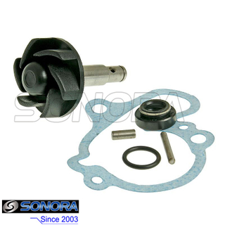 Water pump repair kit Minarelli AM6